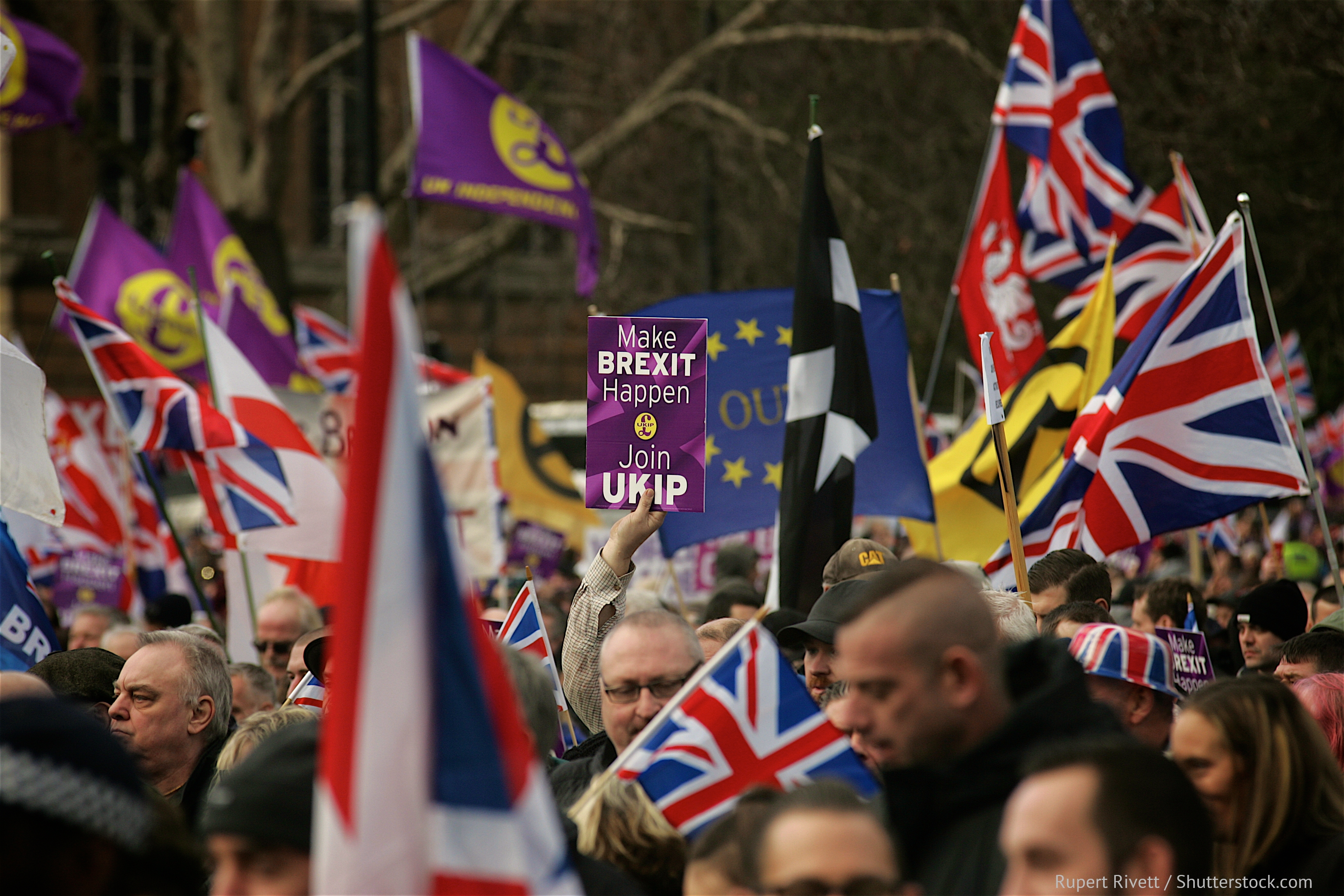 UKIP and Pro Brexit protest